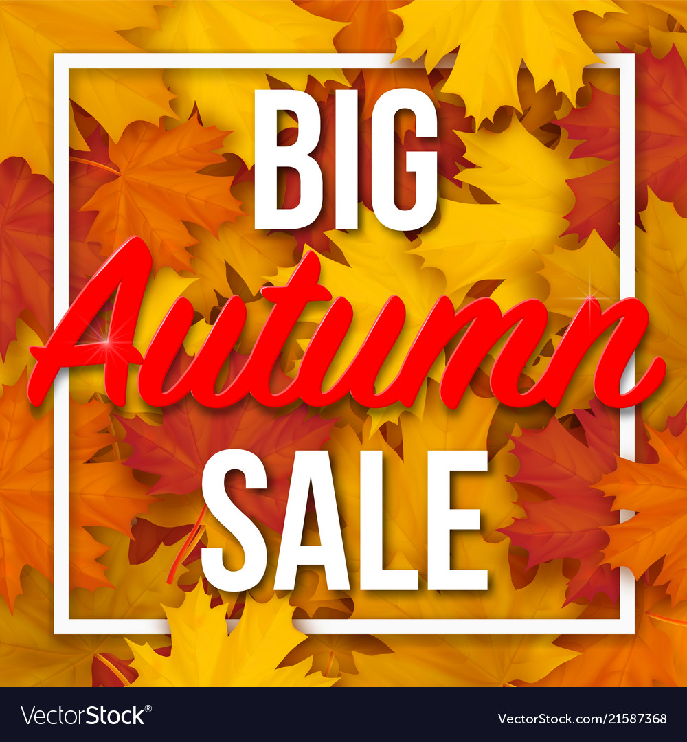 Big autumn sale text on maple leaves background
