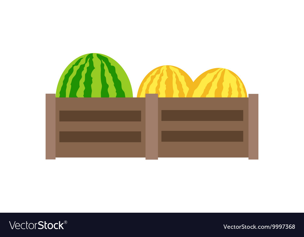 Melon In Flat Style Design