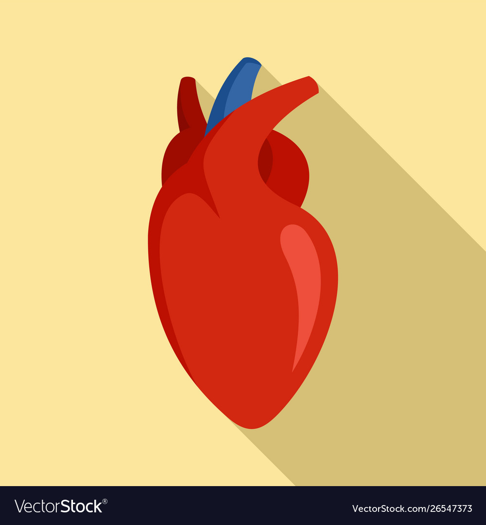 Human heart icon flat style
