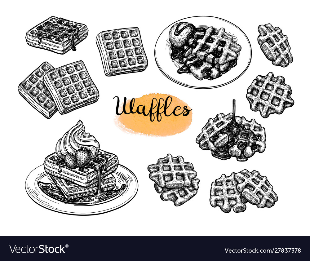 Ink sketches waffles