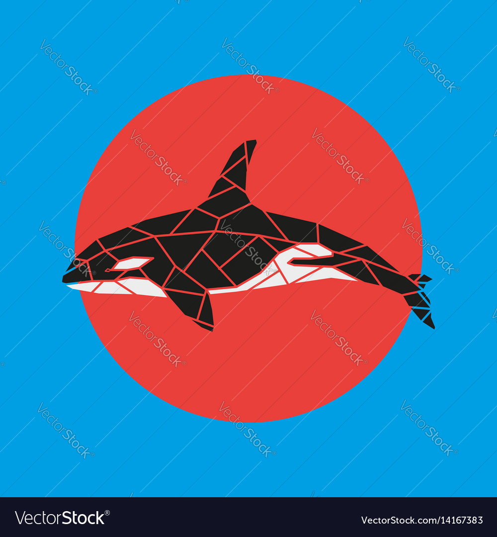 Geometry grampus whale vector image