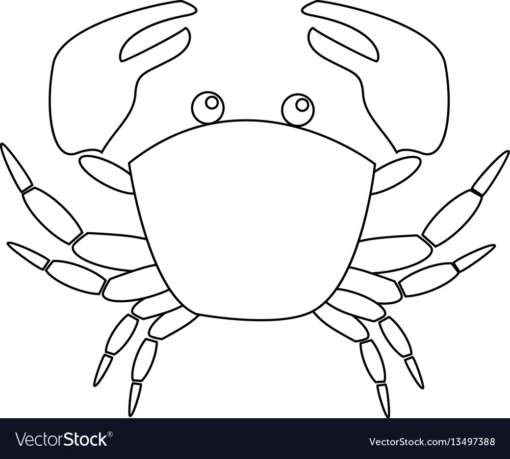 Contour image of crab isolated on white background