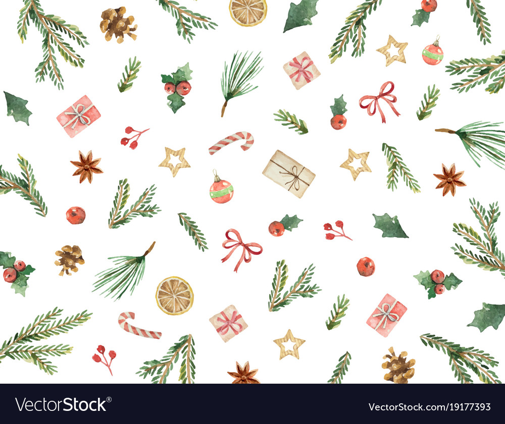 Watercolor christmas card with fir branches Vector Image