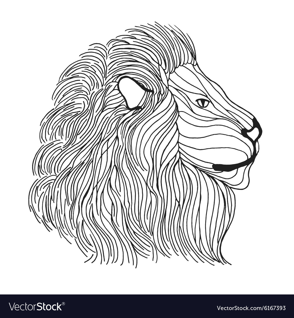 Zentangle stylized lion head Sketch for tattoo or