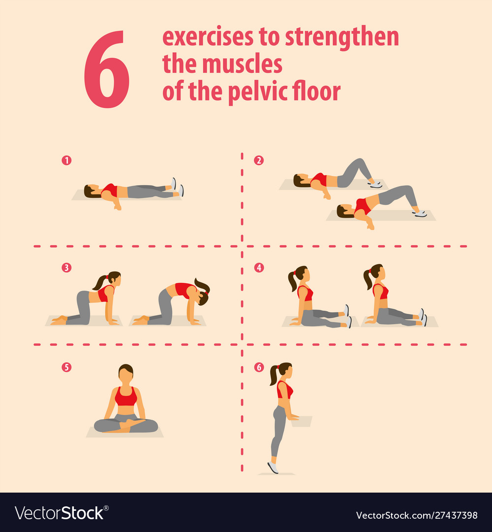 Exercises to strengthen muscles pelvic