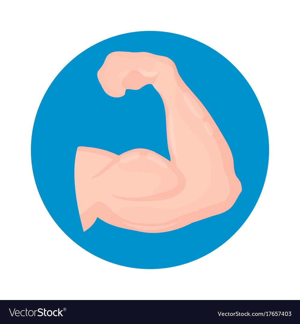 Biceps icon isolated on white background