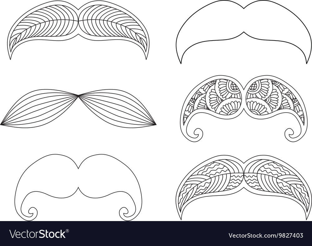 Set of graphic ornamental mustaches vector image
