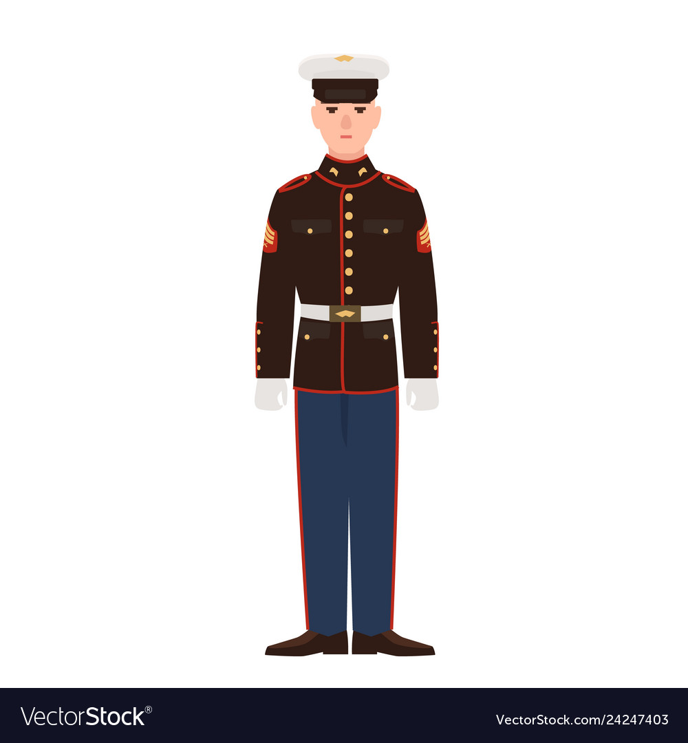 Soldier of usa armed force wearing parade uniform