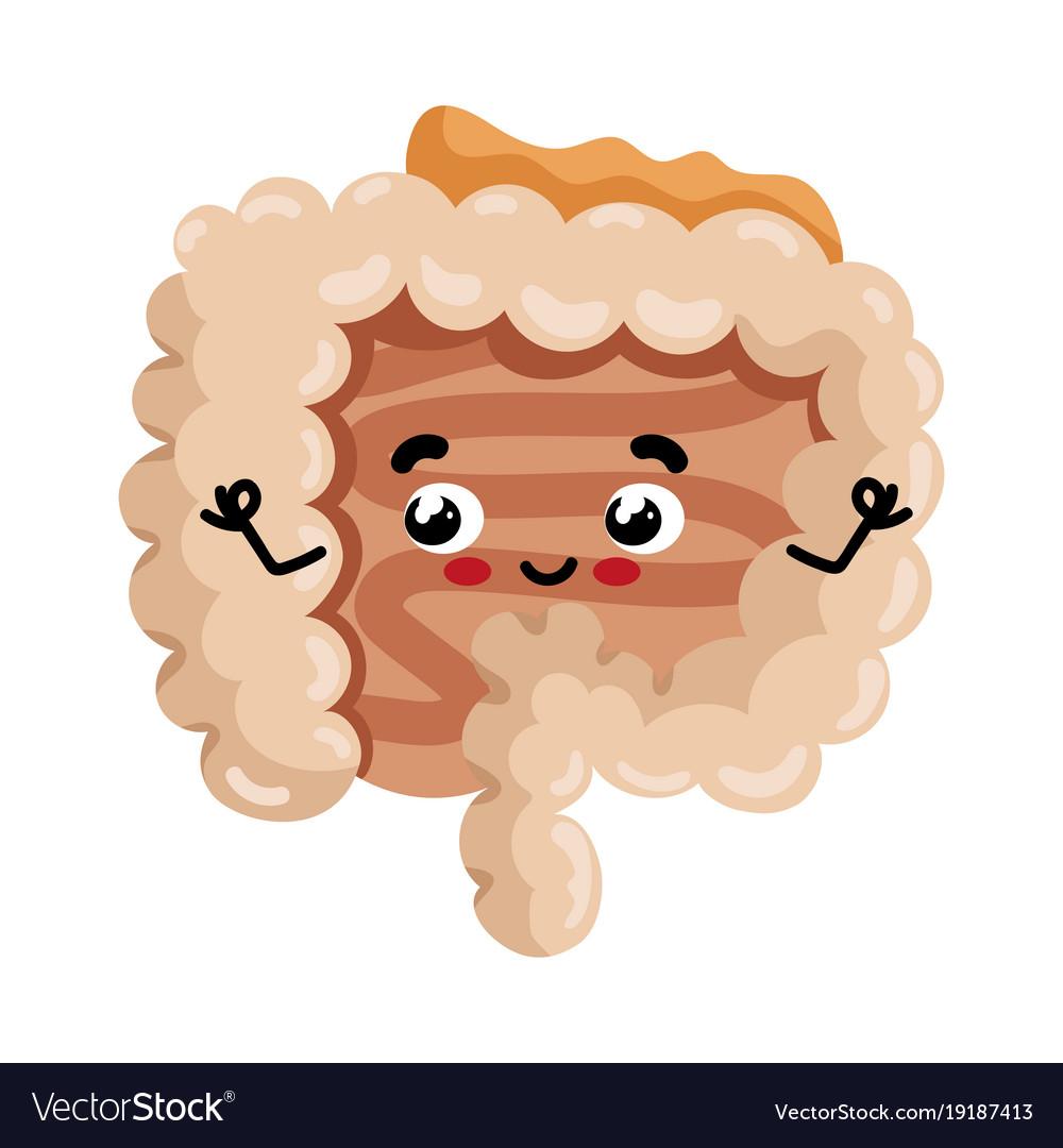 Human intestine cute cartoon character