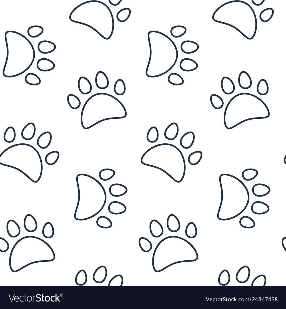 Animal seamless pattern paw footprint vector