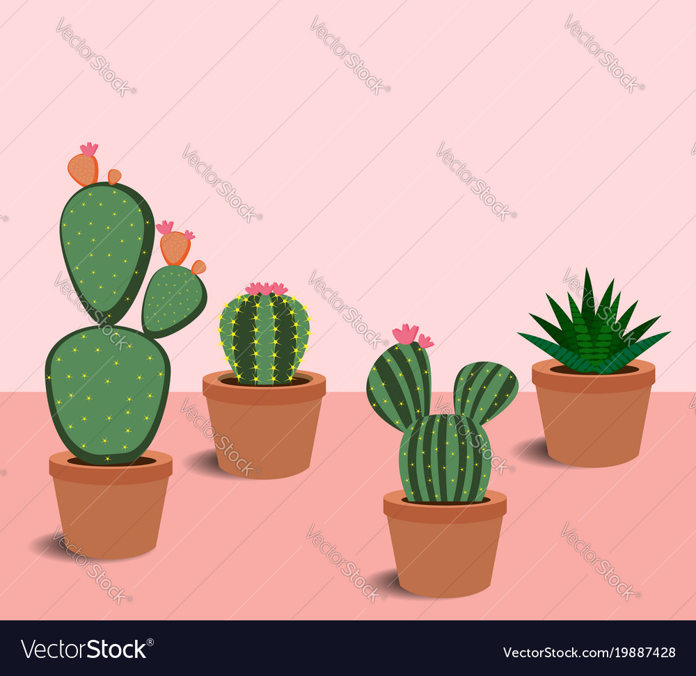 Cactus And Succulents With Flowers Royalty Free Vector Image
