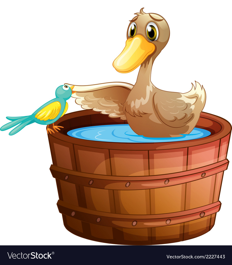 A duck and a bird at the bathtub with water Vector Image