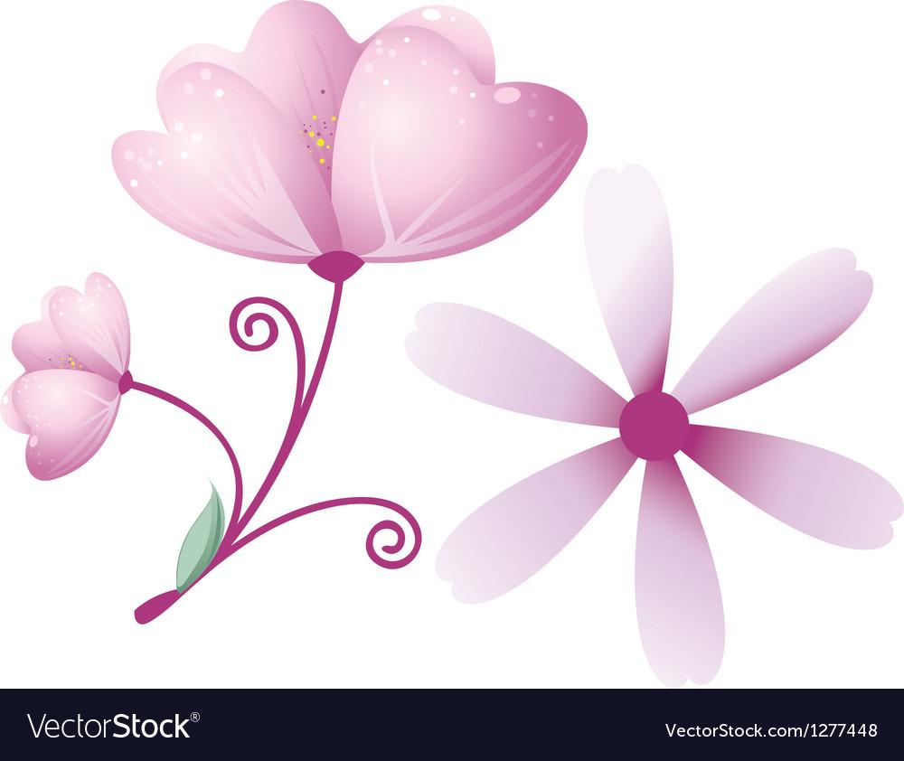 Purple Flower Royalty Free Vector Image Vectorstock