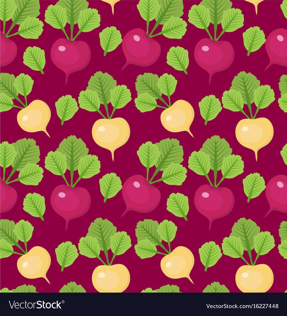 Radish seamless pattern red and white radishes