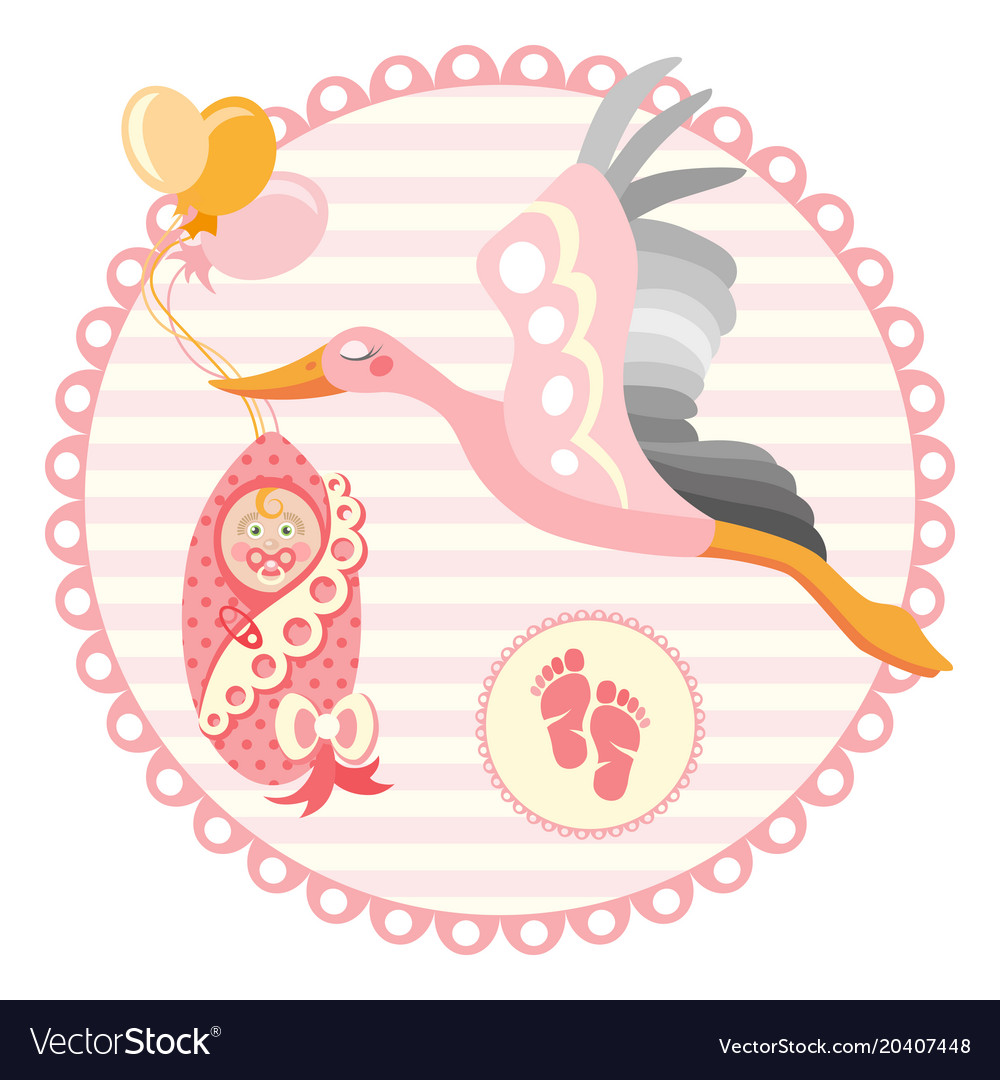 Stork carrying a cute baby it s a girl vector image