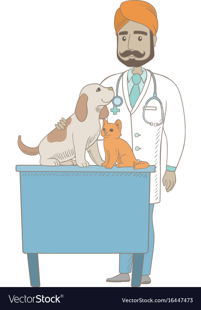 Young indian veterinarian examining pets vector image