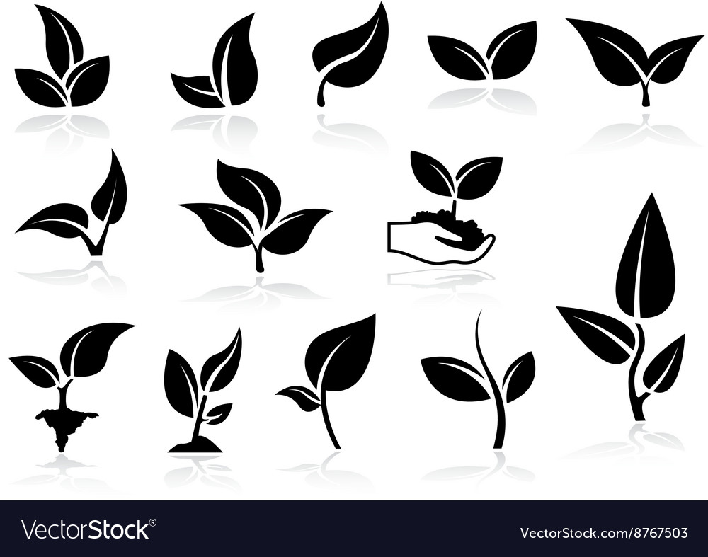 Plants Icons Set