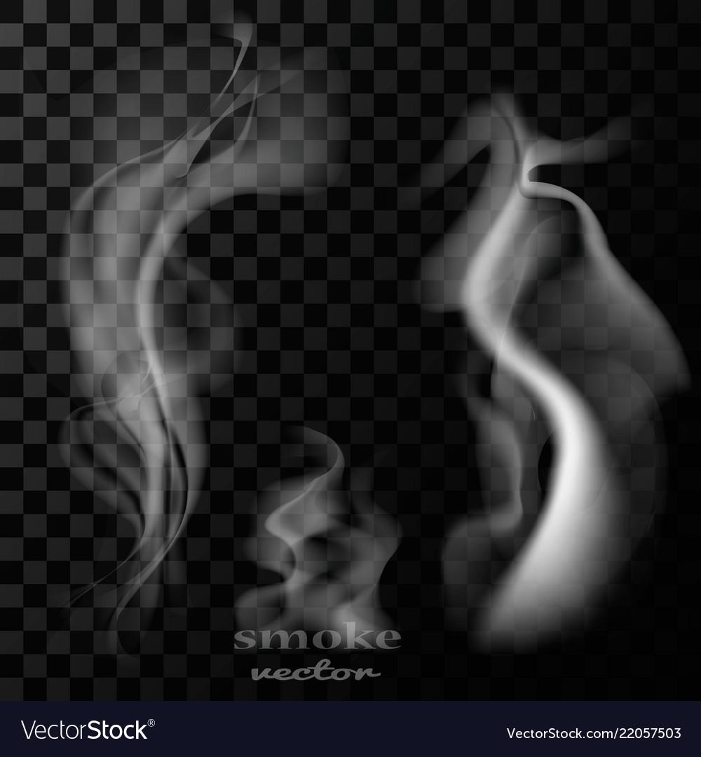 Smoke assembly eps 10