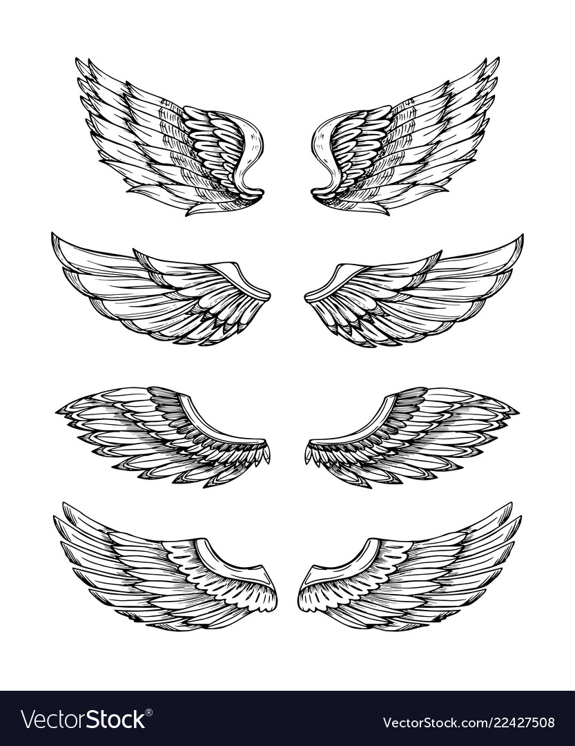Angel wings abstract black winged design eagle