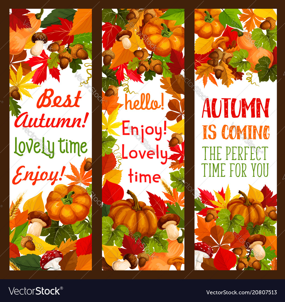 Autumn holiday of thanksgiving day banner set