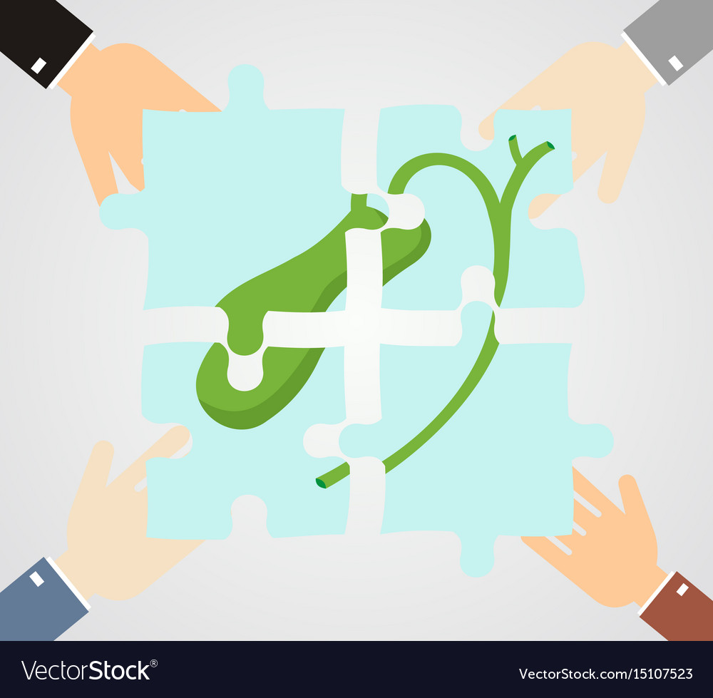 Healthcare concept hands hold pieces puzzle of vector image