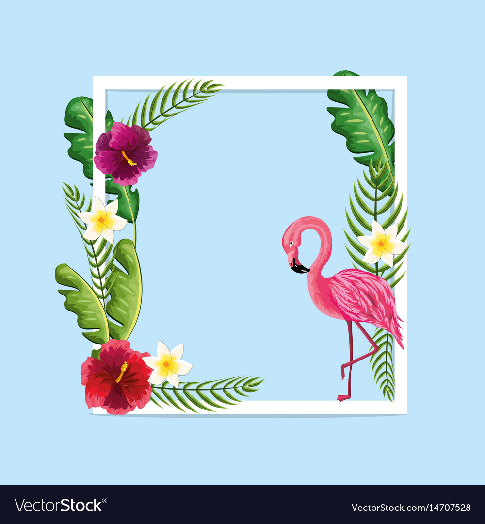 Beauty and cute flowers plants with flamingo