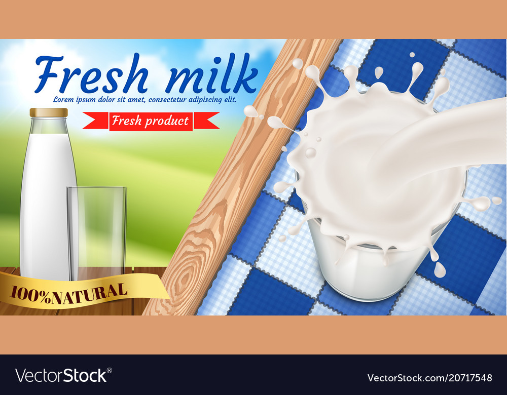 promo banner of fresh milk dairy products vector image