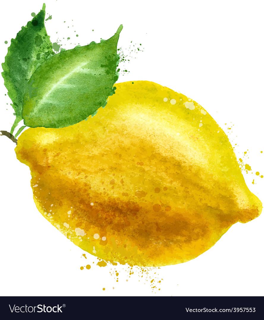Lemon logo design template food or fruit