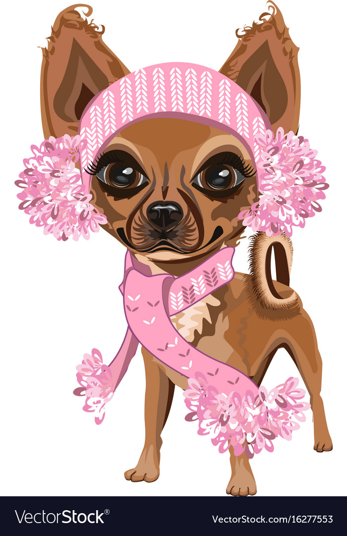 Little dog in a knitted hat