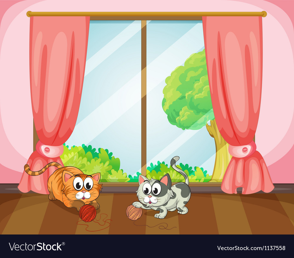 Cats playing with wool vector image