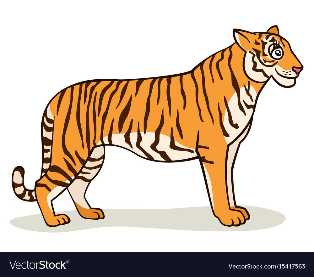 Cartoon cute tiger Royalty Free Vector Image - VectorStock