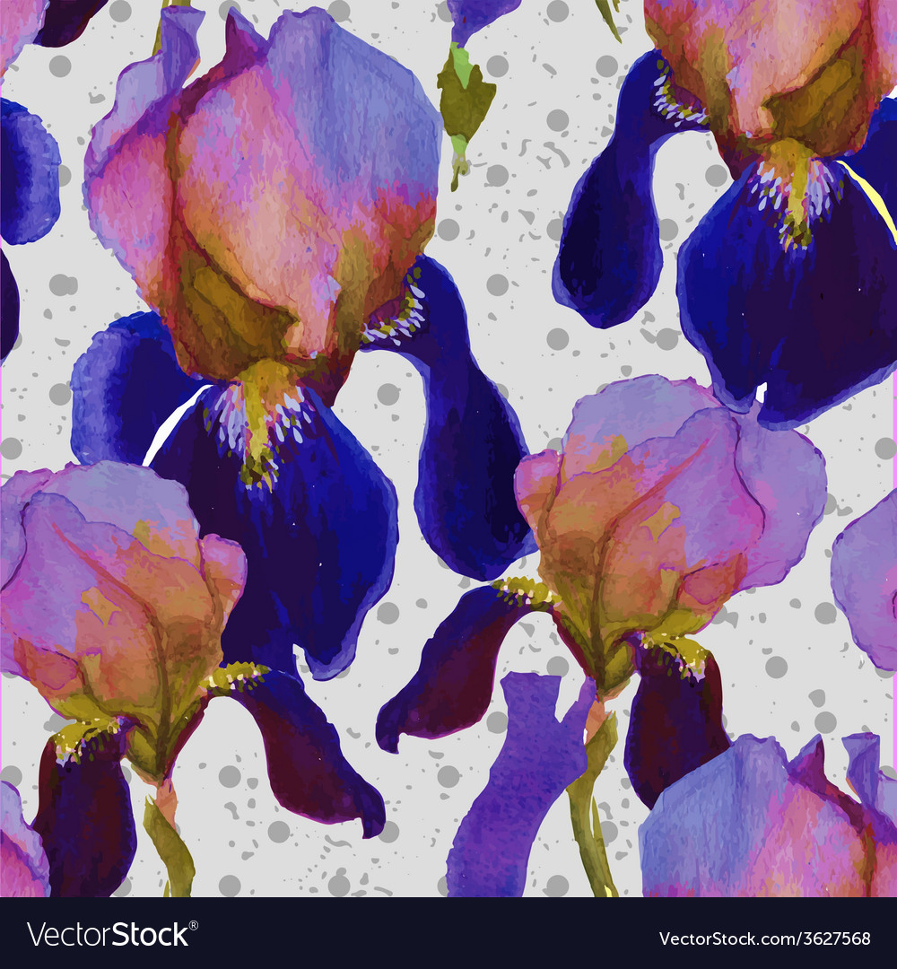 Seamless watercolor pattern with iris flowers in