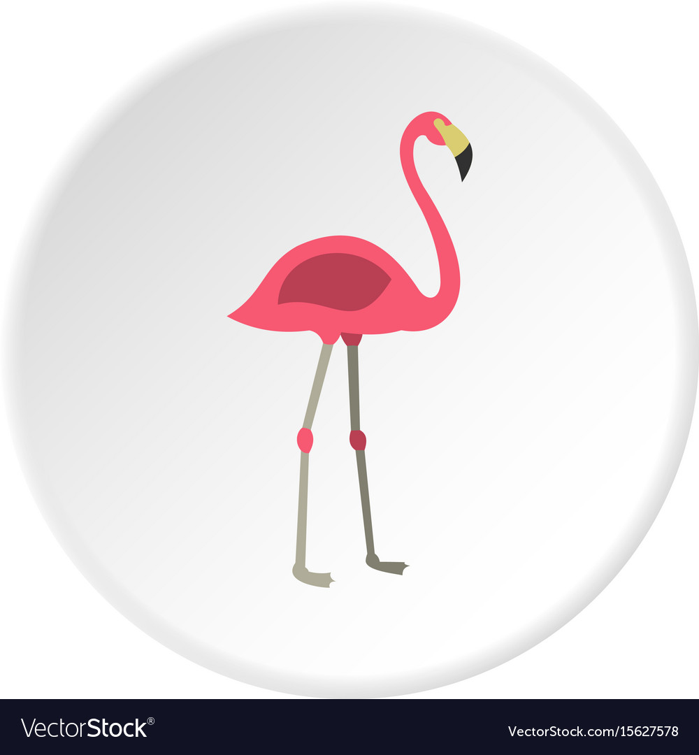 Pink flamingo icon circle