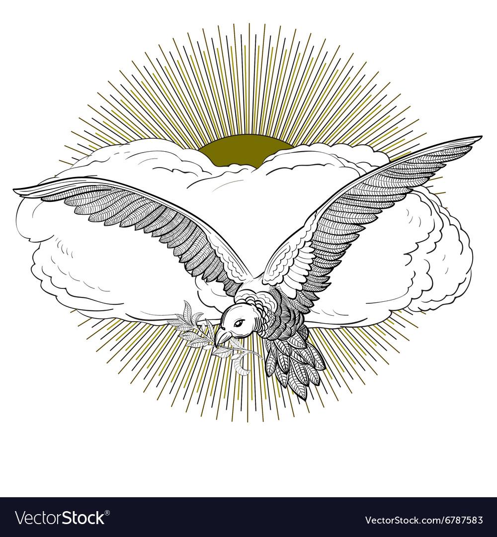 Dove sun vector image