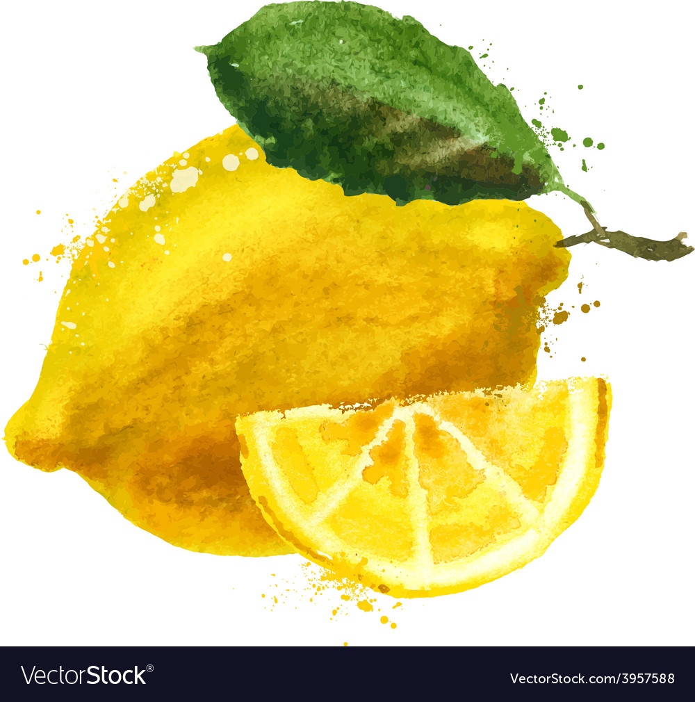 Fruit logo design template food or lemon