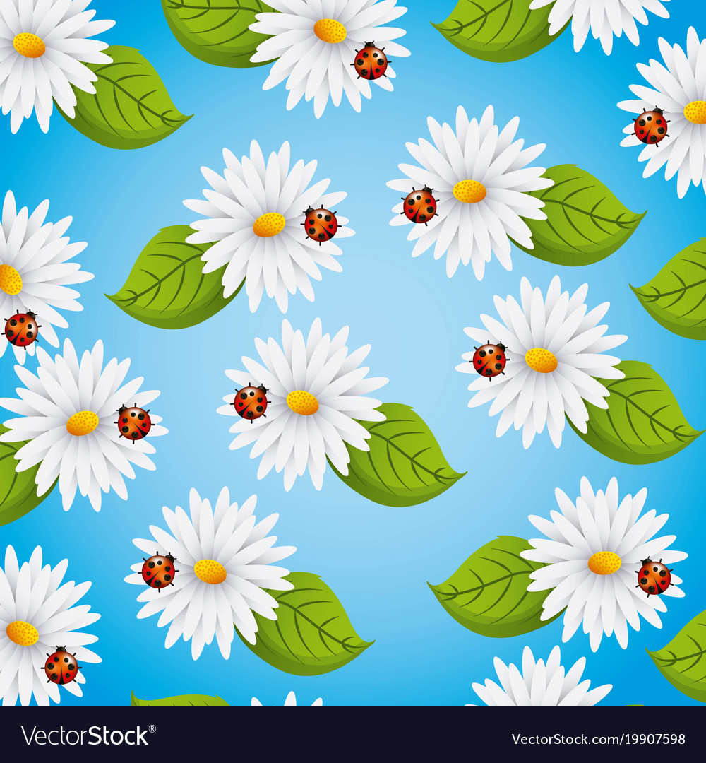 Seamless pattern daisies flowers ladybug and vector image izmirmasajfo