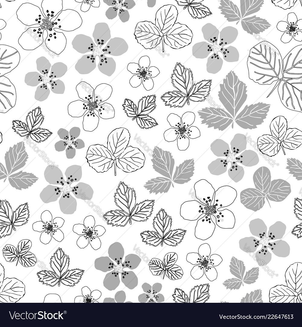 Dewberry blooming-flowers in bloom seamless repeat