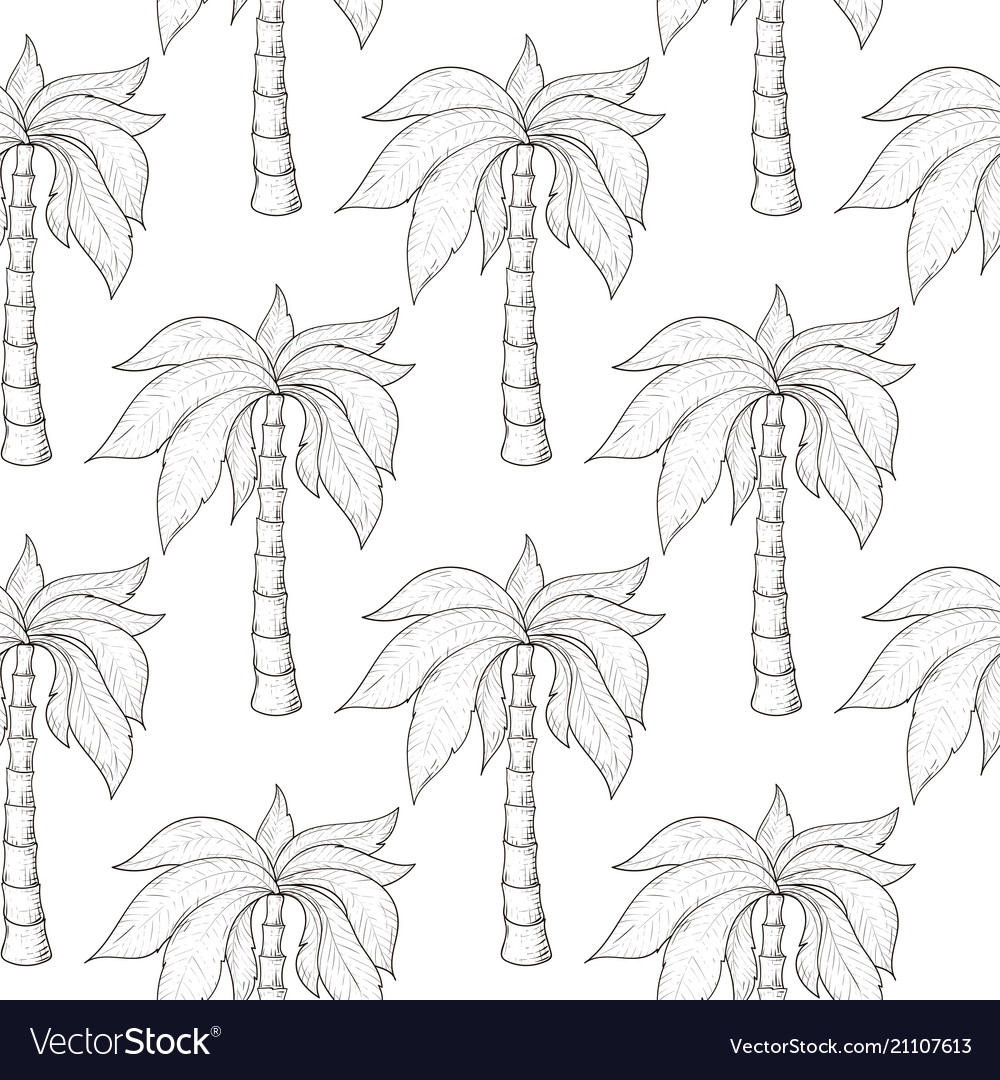 Palm trees as seamless pattern hand drawn sketch