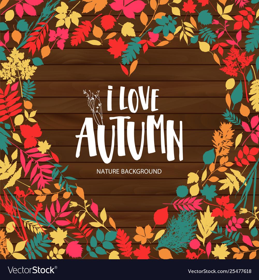 Autumn leaf poster orange leaves maple