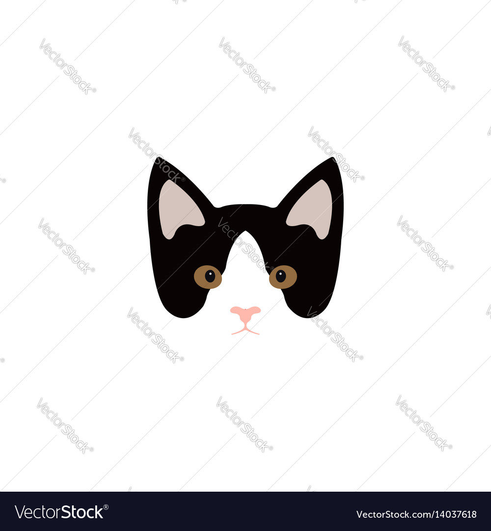 Simple cartoon kitty icon on a white background vector image