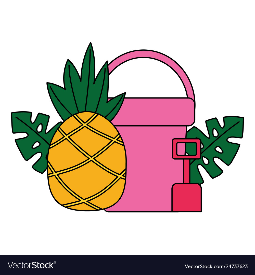 Bucket and shovel pineapple tropical summer
