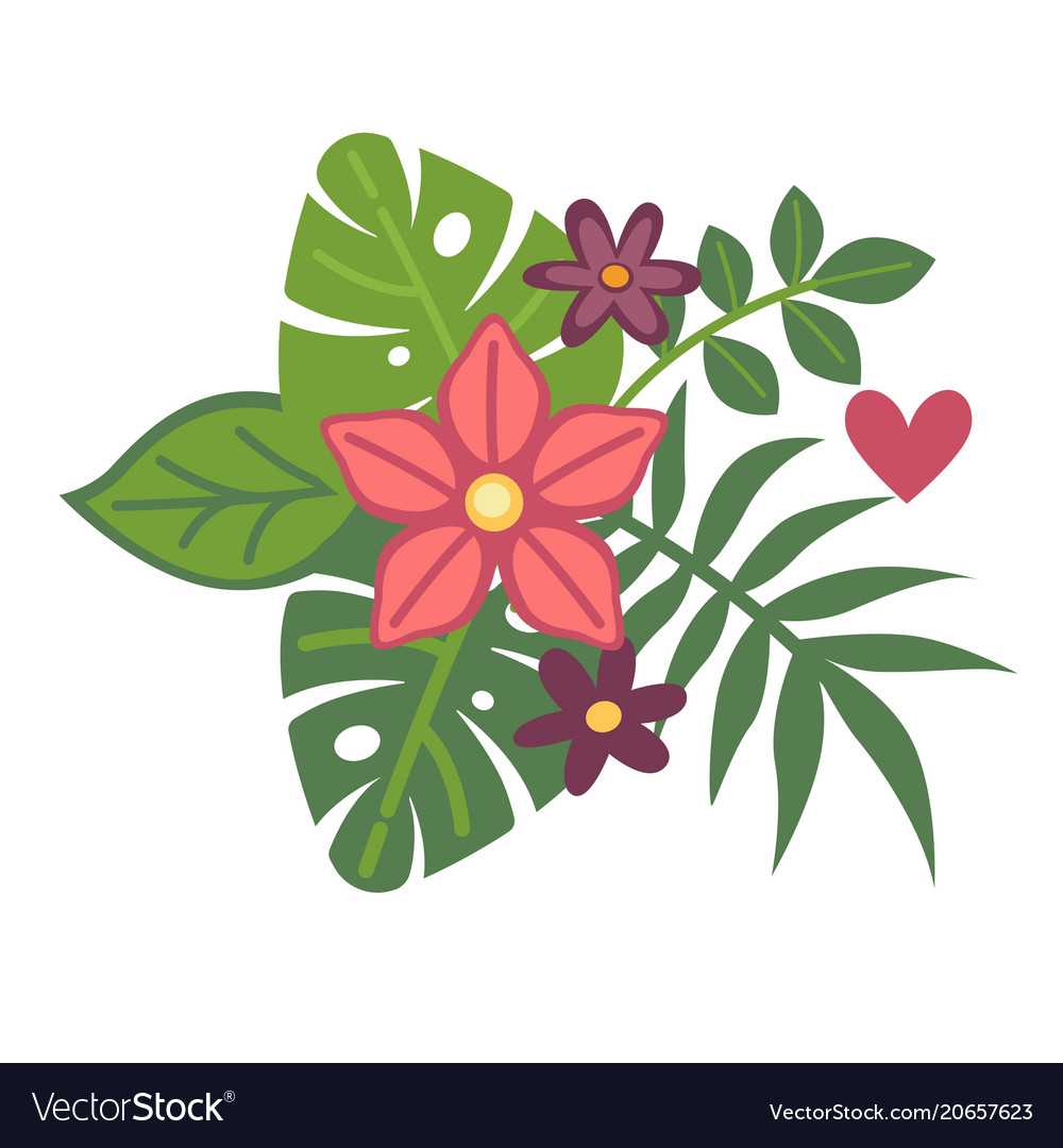 Tropical exotic plants in fresh floristic summer vector image