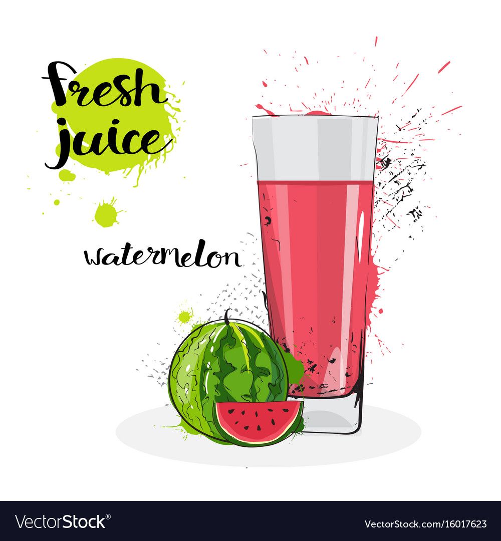 Watermelon juice fresh hand drawn watercolor fruit vector image