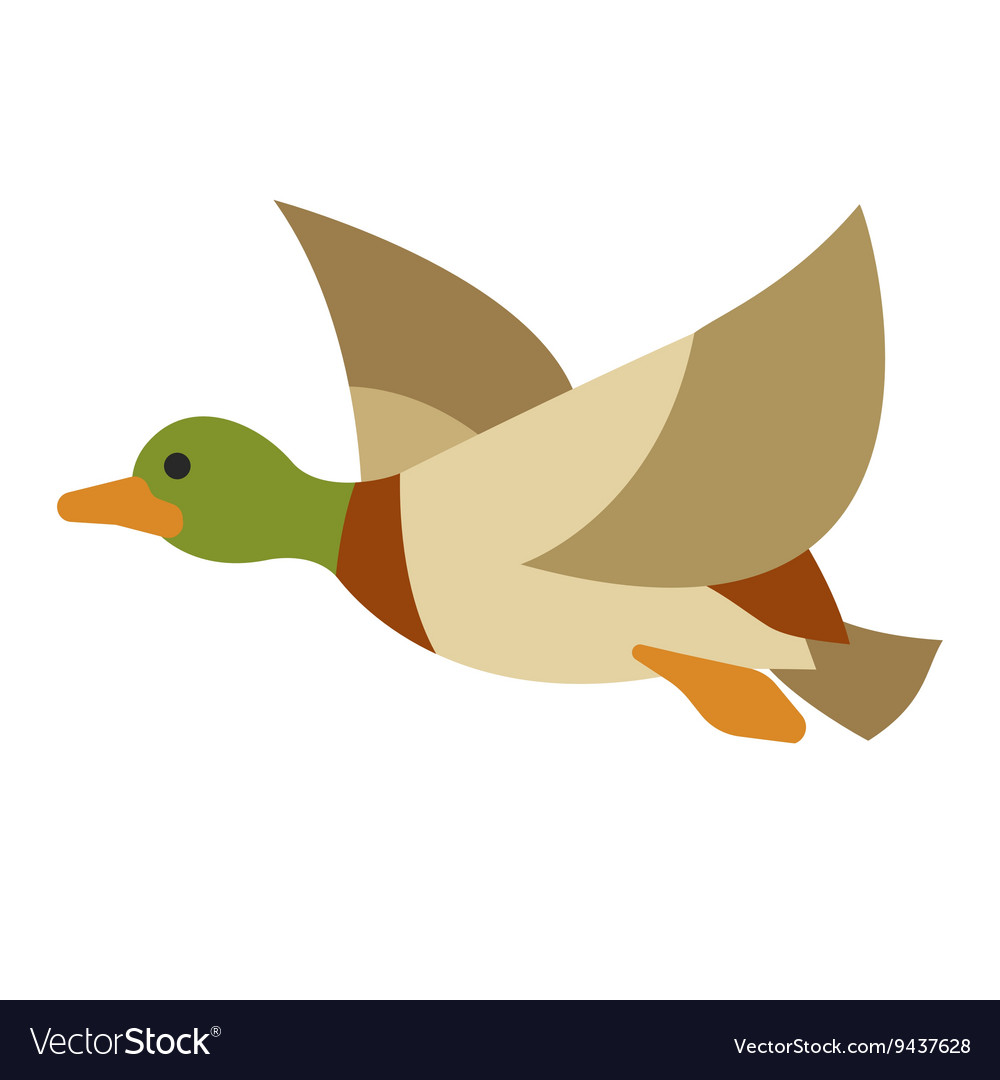 Flying duck on isolated background vector image