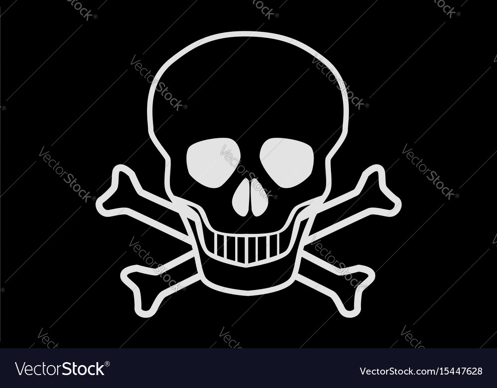 Jolly rodger vector image