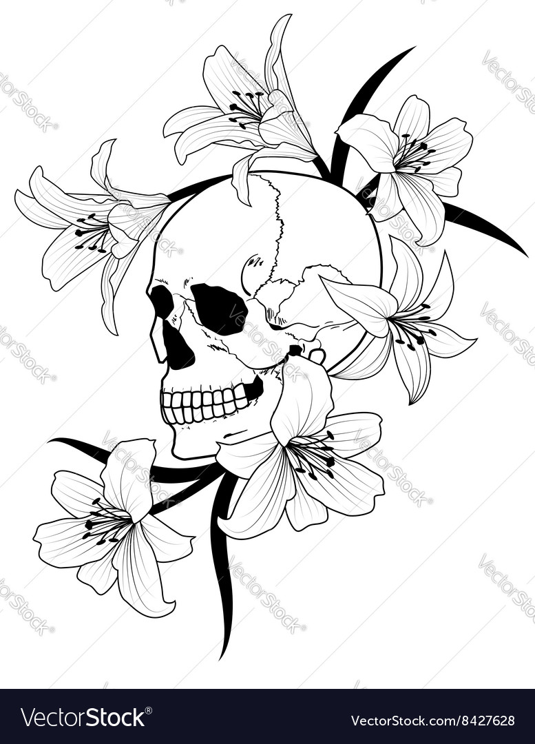 Skull and lily vector image