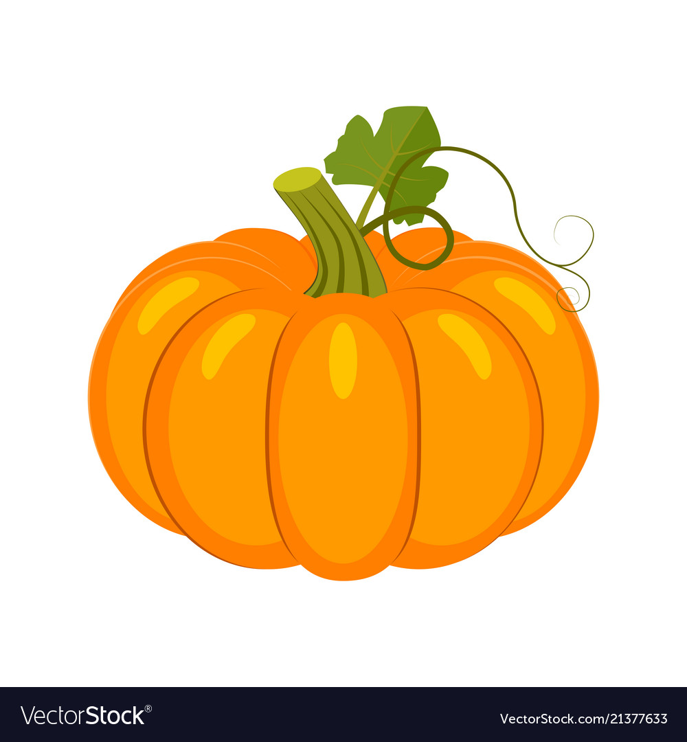 Colorful pumpkin isolated on