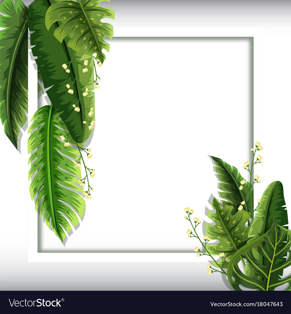 border template with green leaves and flowers vector image
