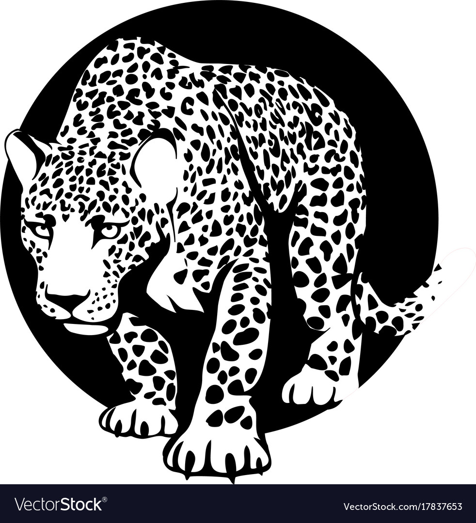 Black and white silhouette of a leopard in a black