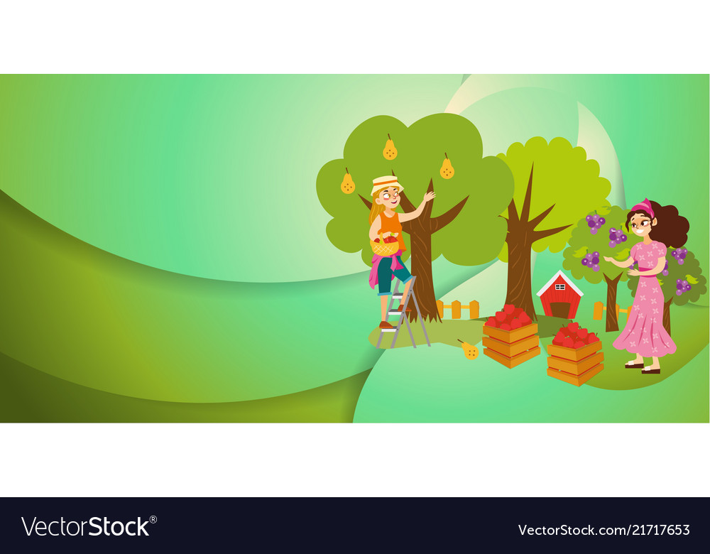 Two girls gathering fruits in orchard flat poster